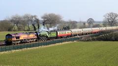 66014/60163 Tornado @ South Milford, Leeds (OLLIEINLEEDS) Tags: 66014 60163 tornado south milford leeds yorkshire steam railway railroad the north briton dbcargo locomotive grass train sky car