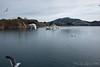 ドリーム大島 (GenJapan1986) Tags: 2018 ドリーム大島 宮城県 気仙沼大島 気仙沼市 海 離島 日本 japan miyagi fujifilmx70 sea 風景 landscape ウミネコ bird 野鳥