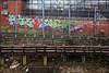 4ce / Enta (Alex Ellison) Tags: 4ce force enta northlondon trackside railway london urban graffiti graff boobs