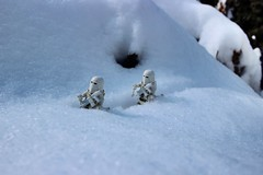 Imperial ski patrol.