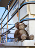 Monkey On Tower 1 (FilmAndPixels) Tags: ifttt instagram stuffed stuffedanimal monkey stuffedmonkey lifeguardtower huntingtonbeach