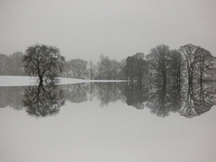 Snow (Tobymeg) Tags: mirror made scotland trees sky white