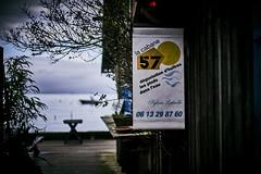 (thierrylothon) Tags: aquitaine gironde presquilecapferret piraillan sony sonya7riii nikon nikkor50f14ais phaseone captureonepro c1pro publication flickr fluxapple collection portfolio lègecapferret nouvelleaquitaine france fr
