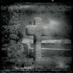 Perished (*altglas*) Tags: mediumformat mittelformat 6x6 120 film analog expired expiredfilm orwonp20 bw monochrome zeiss superikonta graveyard friedhof snow schnee winter neunkirchen odenwald cross kreuz