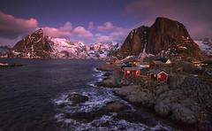 Lofoten Dawn (Tracey Whitefoot) Tags: 2018 tracey whitefoot january winter lofoten islands hamnoy reine sunrise dawn morning warm tones norway