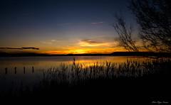 Laguna de Pitillas (pedrohias) Tags: laguna pitillas naturaleza paisaje amanecer navarra nature landscape cielo sky pentaxk50 dawn sunrise