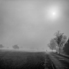 Nebel (stephanbehnes) Tags: stephan behnes frankfurt germany nikon 5500 best camera prime lens 35mm 50mm 14 18 sigma art 1680 70200 world street photography strasenfotografie city snap portrait flickr holga