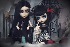 Hisashiburi desu // It's been a while (Ma✰D (parker) - Dolls, Customisation & The Cat) Tags: pullip taeyang fullcustom ooak poupée dolls gothic dark
