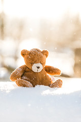Little one (mirri_inc) Tags: snow winter bokeh light sun cold teddy toy calm beautiful mood