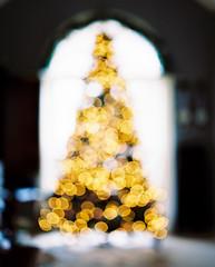 Oh Christmas Tree (PeterStout) Tags: christmas christmastree pentax105 pentax67 portra400