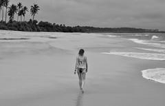 Sri_Lanka_17_208 (jjay69) Tags: srilanka ceylon asia indiansubcontinent tropical island beach tropicalbeach paradise perfectbeach srilankanbeach sandybeach sea ocean tangalle tangallebeach tangalla blackandwhite blackwhite bw monochrome singlecolour nocolour colourless grey withoutcolour