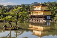 So shiny (21mapple) Tags: kinkakuji golden pavillion japan japanese zen buddhist garden lake water pond kyoto
