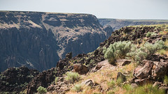 Owyhee Canyon Overlook, Owyhee River Canyon Wilderness Study Area (BLMOregon) Tags: blm wsa bureauoflandmanagement wildernessstudyarea owyheecanyon owyheeriver oregon vale recreation landscape wildandscenicriver wild scenic rafting boating hiking soldiercreekroad overlook