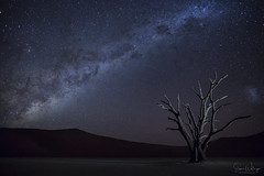 Forget About Your Day Under the Milky Way (SharonWellings) Tags: red milkyway namibia stars astro astronomy sharonwellings landscape night nightphotography africa desert sousselvlei