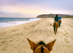 171230 Sunset Horseback Riding (Fob) Tags: december 2017 mexico baja bajacaliforniasur travel trip ranchopescadero beach people friend horses