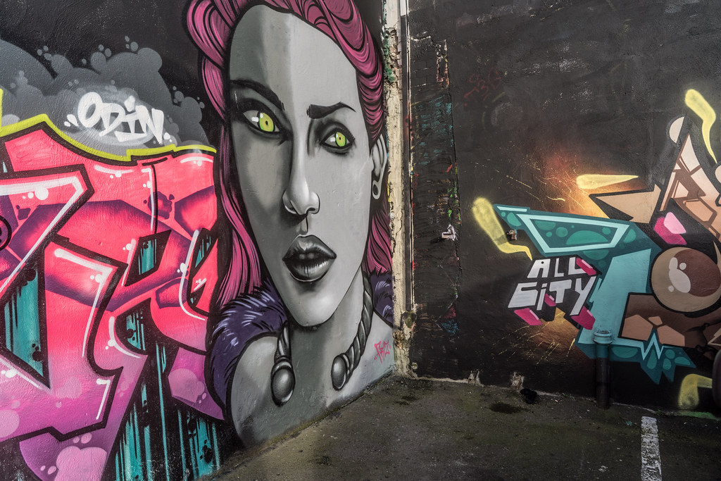 STREET ART AT THE TIVOLI CAR PARK IN DUBLIN [LAST CHANCE BEFORE THE SITE IS REDEVELOPED]-135595