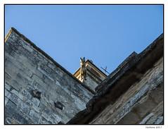 2017-01-11_Venasque-0047.jpg (Hacheme 26) Tags: détailsarchitecturaux gargouille eglise edificereligieux architecturebâtiments venasque provencealpescôtedazur france fr
