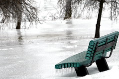 Frozen solitude (Captions by Nica... (Fieger Photography)) Tags: bench ice icestorm snow storm weather winter frozen frosted frost icicles parc park outdoor nature trees tree january cold covered quebec canada