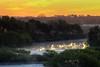 Manatee River Sunrise (ap0013) Tags: manatee river sun sunrise landscape fog water fla fl florida parrish parrishflorida manateeriver sunset floridasunrise morning