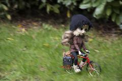 Let's gooo! (Erla Morgan) Tags: doll pullip pullipnoirregeneration pullipnoir noir ann erlamorgan groove junplanning obitsu wig bike red green