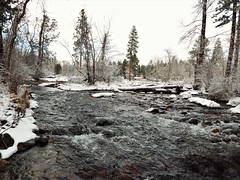 Cold and wet (bljakkl) Tags: winter snow creek water river sky trees wonderland pretty flakes montana arctic white seasons christmas rattlesnake rapids flow branches