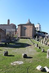 The Curia Julia from the Basilica Fulvia-Emilia - Roman Forum - February 2018 (Kevin J. Norman) Tags: italy tome roman rome forum curia julia basilica fulvia emilia