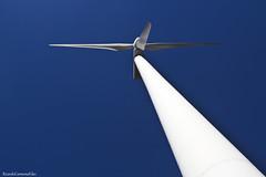 The wind energy (ricardocarmonafdez) Tags: andalucía huelva andévalo windturbine sol sun light sunlight cielo sky blue azul contrast color 60d 1785isusm canon energy energía