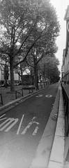 30 km/h (robinbenisri) Tags: 35mm bw hp5 horizon paris street analogroll argentique darkroom diy epson festival film homemade ilford ilfosol3 light lightroom negativefilm panoramic perfection photographer pushed v750pro