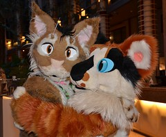 NordicFuzzcon 2018 230 (finbarzapek / SeanC) Tags: nordicfuzzcon nordic fuzzcon fuzz con 2018 fursuit fursuits furry furries convention stockholm sweden animal costumes
