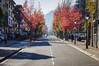 Por la calle principal (SantiMB.Photos) Tags: 2blog 2tumblr 2ig calle street otoño autumn geo:lat=4301201798 geo:lon=223393679 geotagged idiazabal paisvasco españa esp