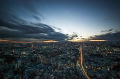 Path to the Light - Roppongi, Tokyo (NOAC_) Tags: tokyo japan mori tower roppongi hills travel tourism skyscraper sky cloud city cityscape landscape dusk sunset light color long exposure trails street aerial pentax k5iis skyline