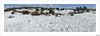 Niebla, nieve y mucha luz (V- strom) Tags: nieve luz light snow montaña mountain niebla fog panorámica panoramicphoto nikon nikon2470 nubes clouds cielo sky blanco white azul blue huellas footprints paisajes landscape