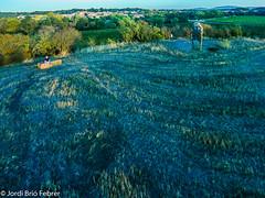 Menhir de Malves a vista de dron / Menhir de Malves a vista de dron / Malves' menhir drone view (Jordi Brió) Tags: aeria france malvesenminervois occitanie aude prehistoric dron malves jordibrio drone cheerson frança novatek francia prehistorico cx20 aerial megalithe occitania a80 megalit apea80 camps campos megalito aeri prehistorique fields 96660 aerea apeman apemana80 champs menhir fr dronestagram
