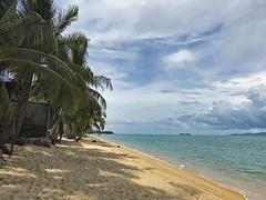 Thailand | Koh Samui | Maenam Beach (flashpacker-travelguide.de) Tags: asien asia thailand insel kohsamui wasser meerocean ozean palmen strand sand maenambeach bucht blau tropen palmtrees