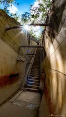 Diamond Head Trail - 99 steps (Bombilations.com) Tags: nikon nikond750 tamron1530 rokinon12mmfisheye oahu hawaii tamron rokinon