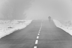 0698 Biker In The Mist (Hrvoje Simich - gaZZda) Tags: fog misty landscape outdoors bike winter snow line morning trees cold slavonia croatia europe nikon nikond750 sigma150500563 gazzda hrvojesimich