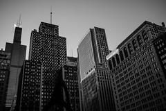 Skyscraper Textures (RW Sinclair) Tags: 2018 3524 35mm carlzeiss chicago dr february flektogon il ilce ilce7m2 illinois jena mc sony winter zeiss a7 a7ii carlzeissjena digital f24 mk2 multicoated vintage