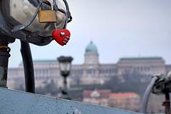 Valentin nap után / After Valentine's (Szab_Photography) Tags: after valentines love bp budapest city cityphotography inhungary outdour castle castleofbuda lánchíd winter red grey green old nikon nikond3300