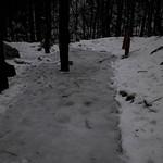 Bohinj, les cascades Savica1801011252-2 thumbnail