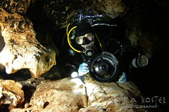 IMG_9612 (2) (SantaFeSandy) Tags: ginnie ginniesprings green guy cavern cave canon camera catfish colors caves color tannins diving devilseye devilsear sandrakosterphotography sandrakosterphotographycom sandykoster sandy sandra scuba santafesandysandrakosterphotographycom scubadiving bryant silhouette passion love it mystery mysterious intrigue