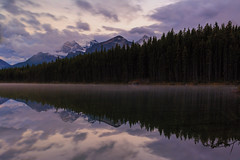Things that binds us (Zur@imiAbro@d) Tags: banffnationalpark herbertlake reflections sunset logs clear tranquil landscape clouds mountains canadianrockies icefieldsparkway zurimiabrod canada calgary