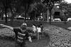 Emirgan Korusu, Istanbul. IMG_0727 (yalcin_savas) Tags: canon eosm children park istanbul streetphotography turkey blackandwhite monochrome