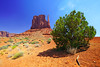 Spectacular juniper in front of the West Mitten, Monument Valley, USA (Andrey Sulitskiy) Tags: usa monumentvalley arizona