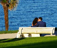 A Wedding Day Kiss (Colorado Sands) Tags: sandraleidholdt españa europe spain bench sansebastian people newlyweds kiss kissing weddingday seaside sea palmtree water basque musukatzen bride groom besando hbm love romantic
