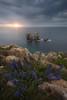 Colores de Primavera (Pablo RG) Tags: urros costa quebrada nikon paisaje landscaoe landscape seaspace cantabria spain mar sea cantabrico naturaleza cost