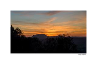 Puig de Randa (Landscape)