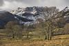 Glencoyne (Peter Henry Photography) Tags: light sunlight morning snow winter glencoynepark ullswater trees hills fells mountains nikon ais