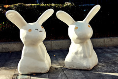 2010-10-24e Bunnies ([Ananabanana]) Tags: nikon d40 gimp photoscape 1855mm 1855 nikkor nikon1855mmkitlens nikkorafsdx1855mm nikonafsdx1855mm nikkor1855mm nikon1855mm nikonistas nikonista uk unitedkingdom london spitalfields spitalfieldsmarket oldspitalfieldsmarket towerhamlets rabbit rabbits bunny bunnies sculpture art statue statues sunlit sunlight