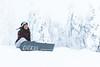about to start snowboarding (VisitLakeland) Tags: snowboard downfill tahko snow winter slope active activity finland lakeland talvi lumilauta aktiviteetti lumi puu tree