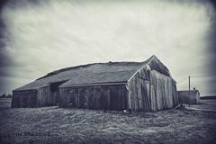 Shape Shifter (Off The Beaten Path Photography) Tags: barn rural farm country indiana markiii 5dmarkiii canon